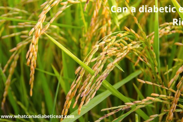 Can a diabetic eat Rice?
